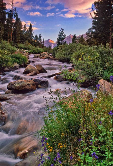 Rock Creek, Mammoth Lakes, Eastern Sierra, California by Gar Cropser