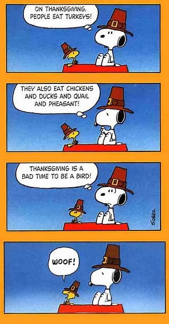Woodstock and Snoopy ♥ Would be fun to show this during Thanksgiving week:)