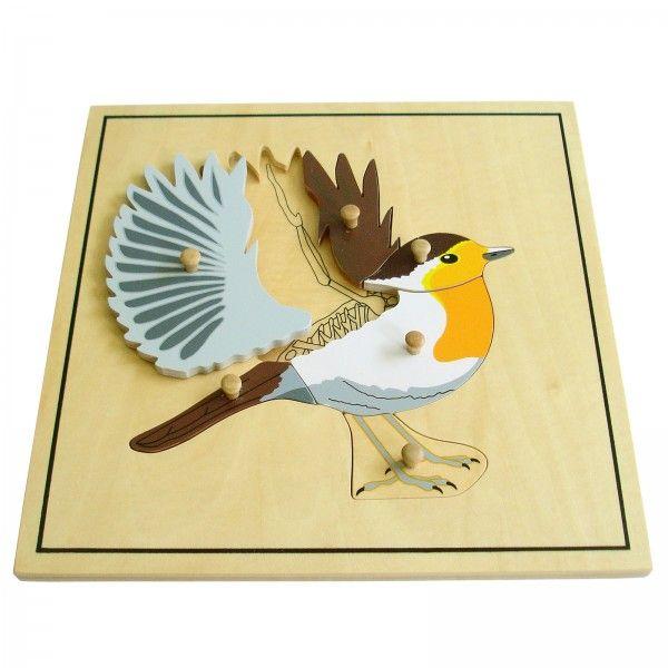 www.malinowyslon.pl  Puzzle  - Szkielet ptaka pomoce Montessori Materiał edukacyjny wykonany z wysokiej jakości drewna w celu zobrazowania budowy zwierząt.  Puzzle przedstawiają ptaka i składają się z malowanych elementów drewnianych z drewnianymi gałkami