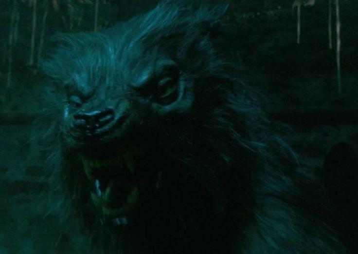 werewolves | The Problem With Female Werewolves