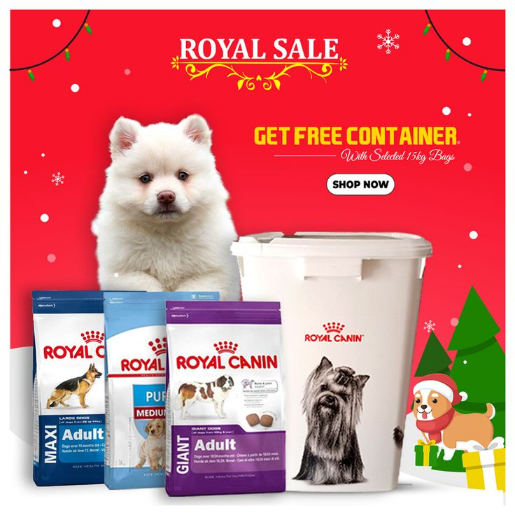 Free container with royal canin dog food best dry dog