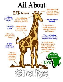 My All About Giraffes Book - Instead I would have students pick a Texas themed plant or animal to construct their book on a computer.