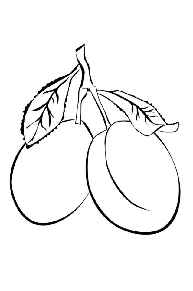 Malvorlagen Kostenlos Obst Https Www Ausmalbilder Co Malvorlagen Kostenlos Obst Creative Drawing Coloring Pages Prints