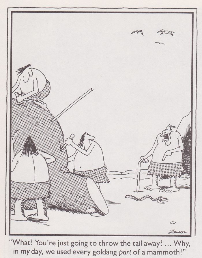 231 best The Far Side images on Pinterest | Comic strips, Humour and