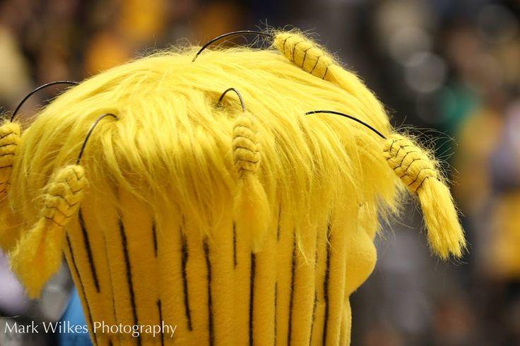 #shox #wsu #basketball #wushock #wu