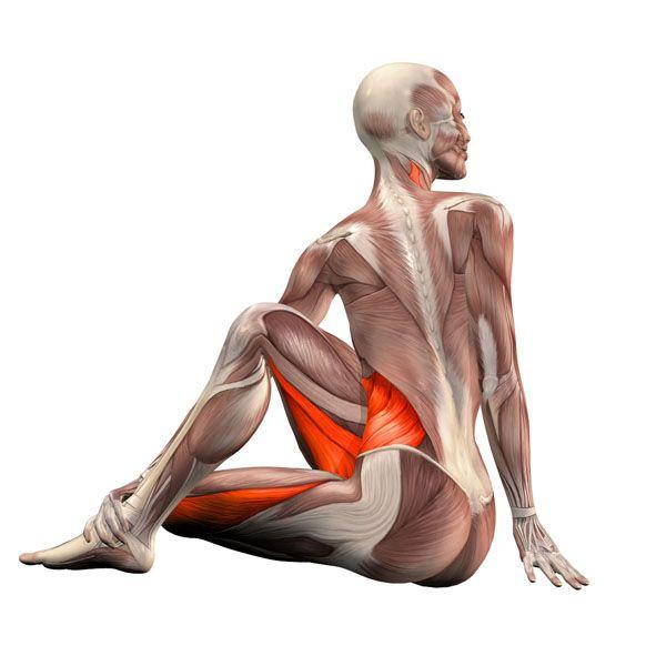 Sitting right twist - Ardha Matsyendrasana right - Yoga Poses   YOGA.com