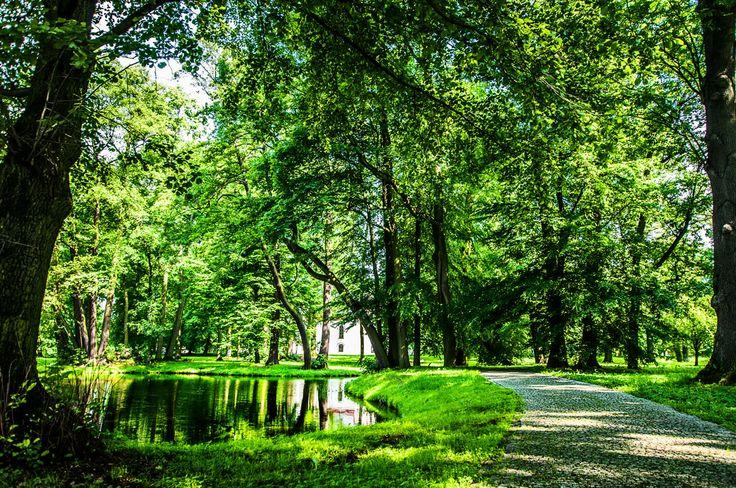 Poland - Ujazd - park