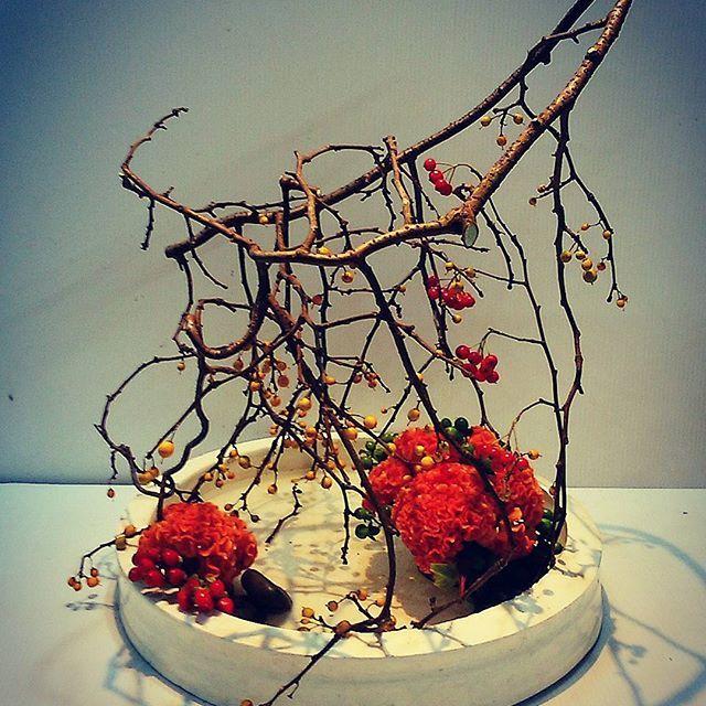 IKEBANA  独りよがりで自己満足のお花です。  植物の力強さ 妖艶さが表現したかったお花です。 単純に美しいと違うお花があるべきと思います。  つるうめもどき 鶏頭 赤と緑のヒペリカム アロニアを少し  つるうめもどきの構成が終わった時点で作品は完成していました。 花を合わせてもつるうめもどきが拒否するからです ただ植物のエネルギーの源みたいなものを花で表現したかったので花を入れました。  #IKEBANA #Instagram #flower #flowerarrangement #florist #fantastic #power #生け花 #いけばな #華道 #自由花 #花遊び #大和花道 #花 #植物 #力強さ #妖艶 #フラワー #フラワーデザイン #つるうめもどき #鶏頭 #表現 #アート #芸術 #美 #美意識 #渋谷 #駒場東大