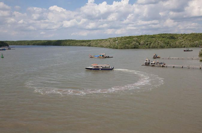 Can Gio Biosphere Reserve Tour by Luxury Speed Boat 			Take a scenic journey by luxury speedboat to the mangrove forests of the UNESCO-listed Can Gio Biosphere Reserve. This full-day eco-adventure takes you from Ho Chi Minh City past canals of the Mekong Delta, stopping at a lively riverside market. You'll explore Giant Bat Lagoon by rowboat, visit a crocodile reserve, trek through mangrove jungle, observe gibbons and monkeys, and enjoy bird watching with a knowledgeable guide...