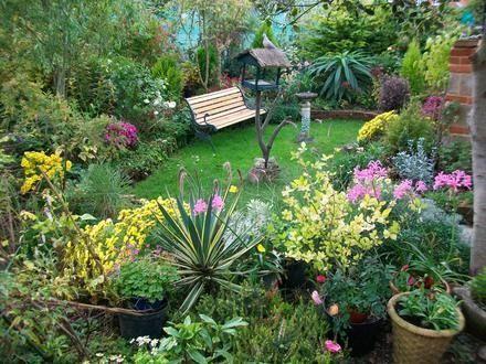 Algunas ideas para jardines peque os jardin pinterest for Arbolitos para jardines pequenos