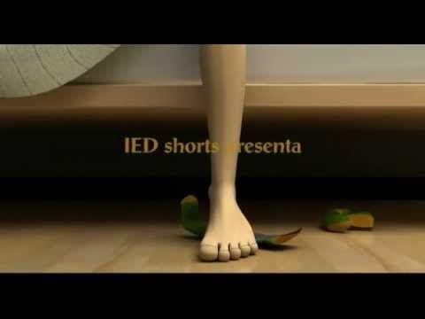 El mundo de los calcetines perdidos - YouTube  El mundo real de los calcetines perdidos