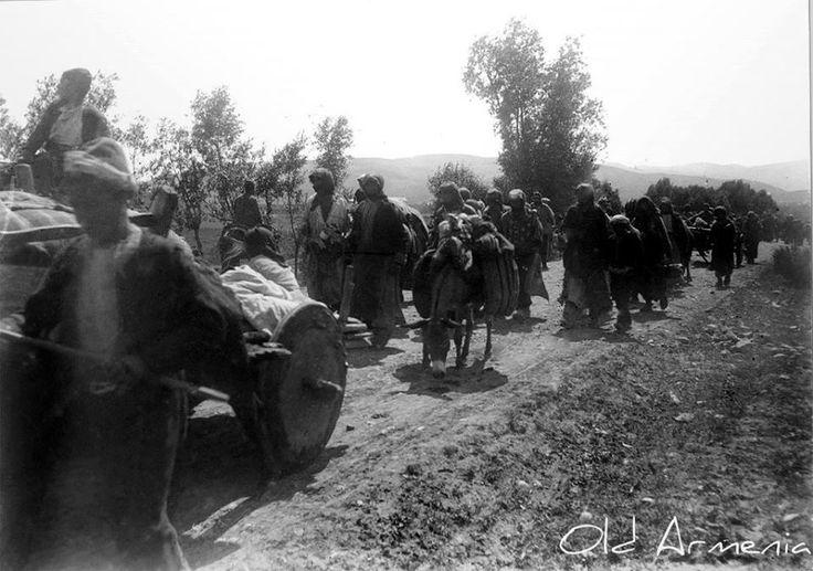 The deportation of the Armenians of Karin (Erzurum)