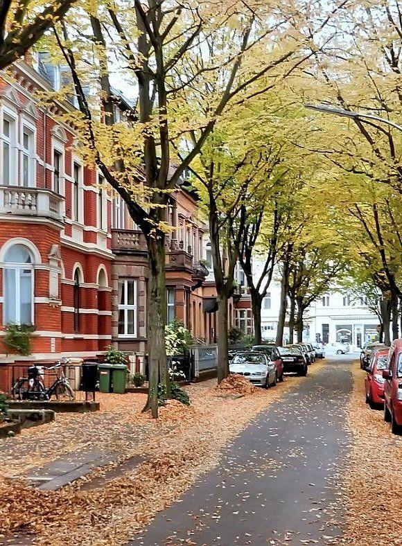 Autumn in Bonn, North Rhine-Westphalia, Germany
