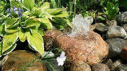 Bepflanzter Brunnen in einem Garten