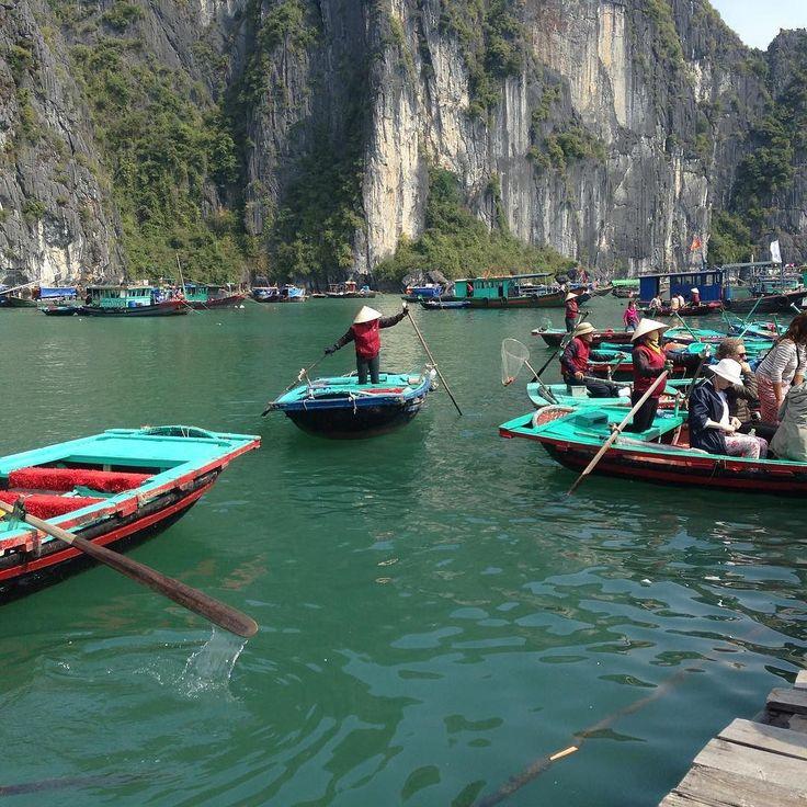 ベトナムの代表的な世界遺産ハロン湾のボート乗り場はこんな感じです  ハロン湾内を案内してくれるツアーの船に乗り1時間くらいするとボートカヤック乗り場一部釣り体験が出来るがあります  それがこちら  このボートは漕いでくれる人がいるボートでカメラにしっかり景色をおさえたい場合は  こちらがオススメです  以上現場からお伝え致しました  #cocoacana #vietnam #halongbay #ベトナム #ハロン湾 #観光 #旅行 #旅 #知っ得 #自然 #世界遺産 #写真 #picture #ここあかな #taiwa