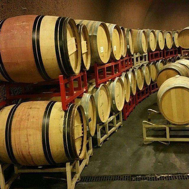 #WineTasting #Preparation #Wines  Photo credits: @greekwines
