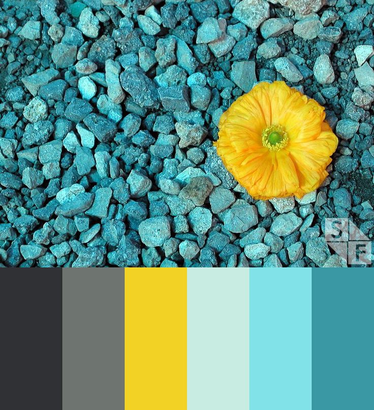 Inspired in the Mediterranean summer colors from Koldo's homeland in Spain to express freshness and brightness. Grey, yellow and turquoise. By ShiftFWD.