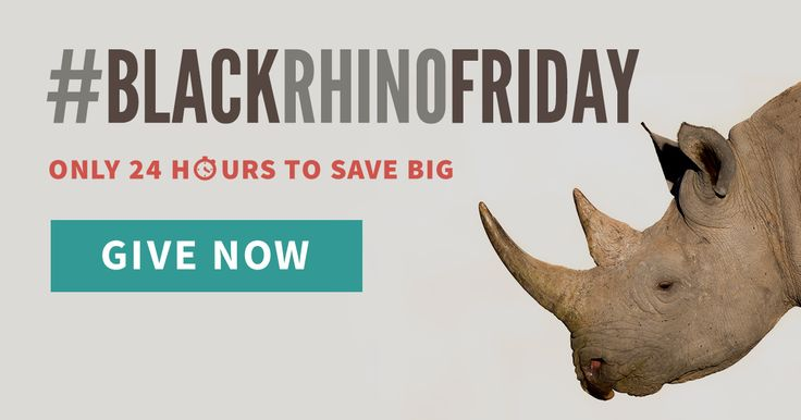 On #BlackFriday, are you looking for a rare opportunity to save big? Then act fast! Your donation today will help save Africa's critically endangered species like the black rhino. But don't wait! This weekend only, #BlackRhinoFriday, a generous donor will add $50 to your tax-deductible donation – no matter how much you choose to give. Let's save wildlife big time!