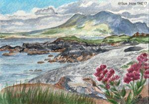 My Renvyle postcard painting can now be bought online via @MollyOllys website: https://www.mollyolly.co.uk/shop/sue_hole/  for just £30 +shipping! #TwitterArtExhibit #charity #TAE17 #connemara #galway #wildatlanticway #wildatlanticwayart #watercolour #artforsale