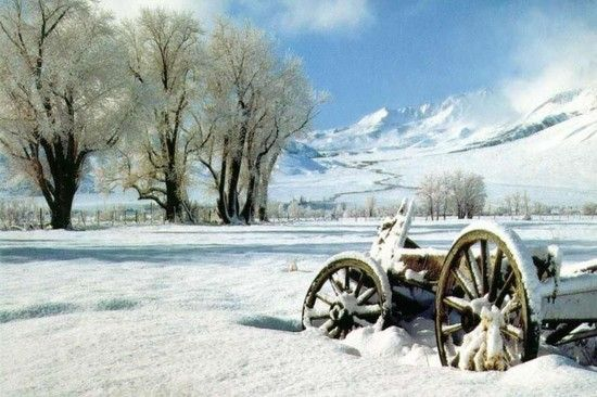 PRANOSTIKA NA ŠTVRTOK 5. JANUÁRA: Biely január, zelený máj, plné pajty a staje, dobre je na gazdovskom dvore