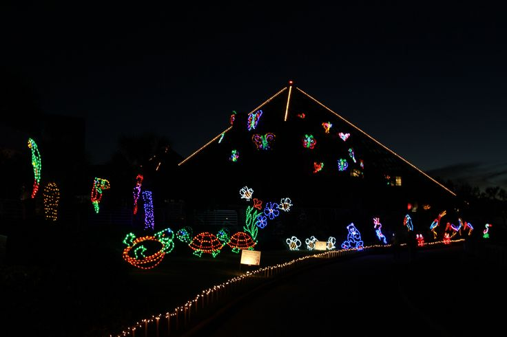 Festival Of Lights At Moody Gardens Galveston Ice Land