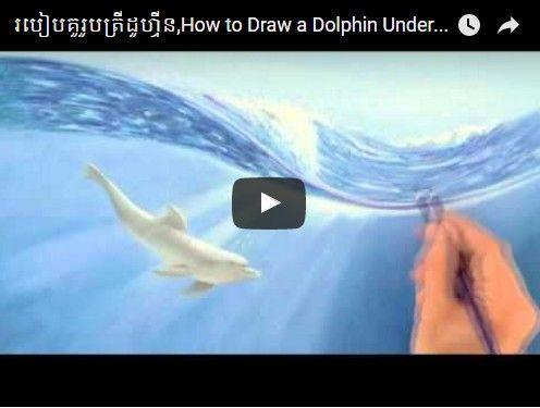Beautifulplace4travel: របៀបគូរូបត្រីដូហ្វីន,How to Draw a Dolphin Underwater With Color Pencils