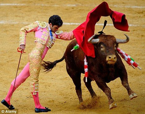 Catalonia set to become first Spanish region to ban bullfighting ...