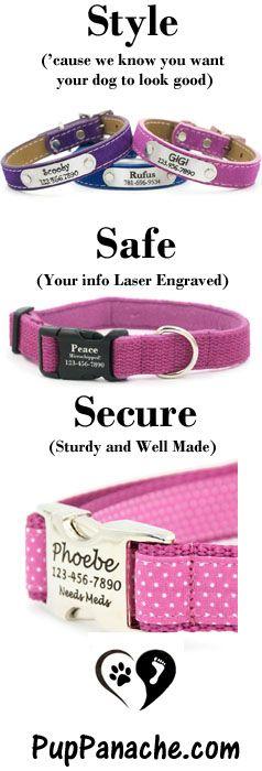 Your dog NEEDS a new collar!