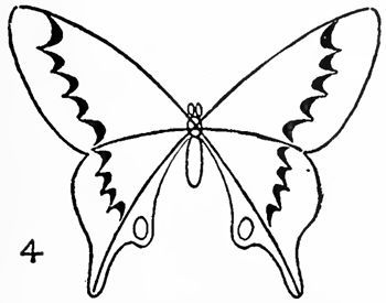 butterfly drawing easy methods how to draw butterflies - 350×275