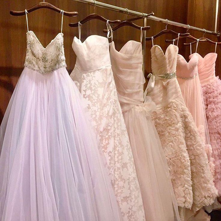 @galleria_collection さんでは新作ドレスが続々登場しています♡ • @lazarobridal や @hayleypaigeoccasions や @inesdisanto など、海外有名ブランドを多数取り扱っています* ・ 『 #ギャレリアコレクション 』のドレスをBeautyBrideからレンタルすると「持ち込み料5万円負担」の特典が使えます☺️💓 ・ ご試着予約&ご相談は @beautybride_weddingdress まで♡ ☎️0120-511-530 ▶︎DMからもOK!「お名前」「希望のドレスショップ」「お電話番号orメールアドレス」を入力してお送りください♡ ▶︎トップページのURLからももちろんOKです! お気軽にお問い合わせください♡ ・ #ビューティブライド #プレ花嫁 #日本中のプレ花嫁さんと繋がりたい #カラードレス #お色直し #ドレス試着 #ドレスレポ #カラードレス迷子 #和装 #卒花嫁 #2017冬婚 #2017秋婚 #2018春婚 #レンタルドレス #婚約指輪 #結婚式 #椿山荘花嫁 #軽井沢ウェディング…