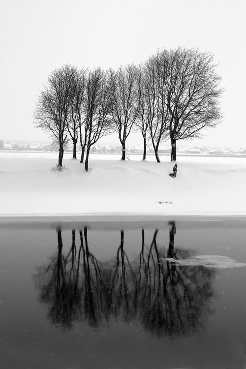 "AP:"" I love this photo. The reflection adds immensely to to composition—I am, however, a bit distracted by the ice that is in part of the reflection.Me: who is the photographer? Let's try to credit them"