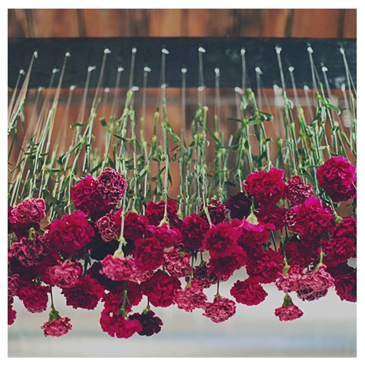 5 Green Wedding Decorations That Will Leave You Speechless: Upside Down Flower Arrangement. Perfect For An Edgy