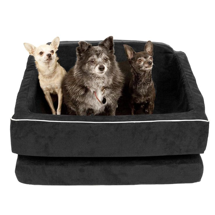 Animals Matter Too Black Back Seat Pet Car Seat ... im looking for a booster seat for my mini pig