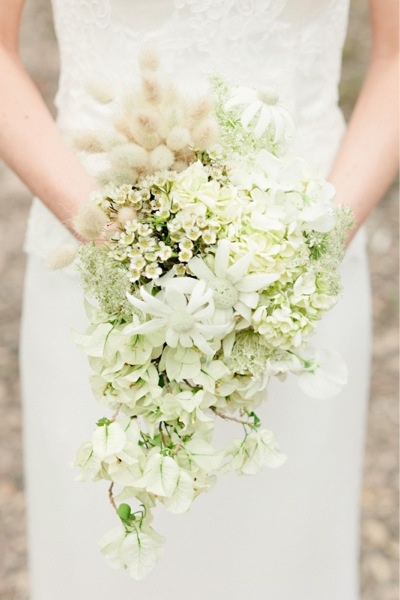 Australian native bouquet by wunderplant studio, Melbourne.  Flannel flowers, Geraldton wax and other gorgeous flowers