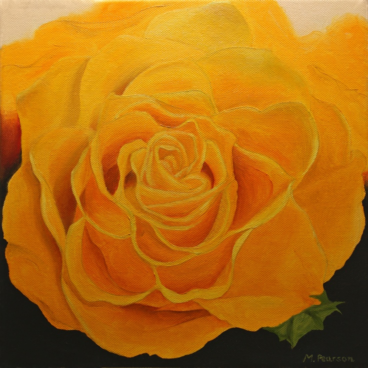 """12x12"""" oil on canvas - yellow Rose"""