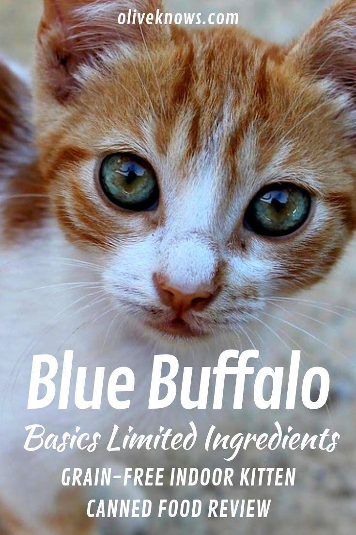 Blue Buffalo Basics Li Grain Free Indoor Kitten Canned Food Review Best Cat Food Cat Food Reviews Kitten Food