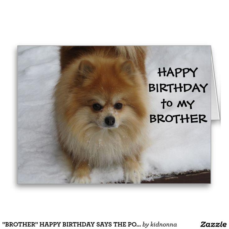 """BROTHER"" HAPPY BIRTHDAY SAYS THE POMERANIAN CARD"