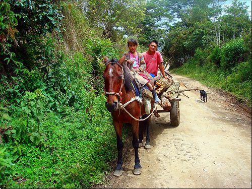 Campesinos del Huila Colombia