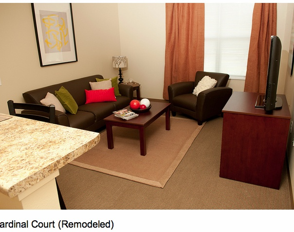 C Apt Living Seating AreaI See A Future Party
