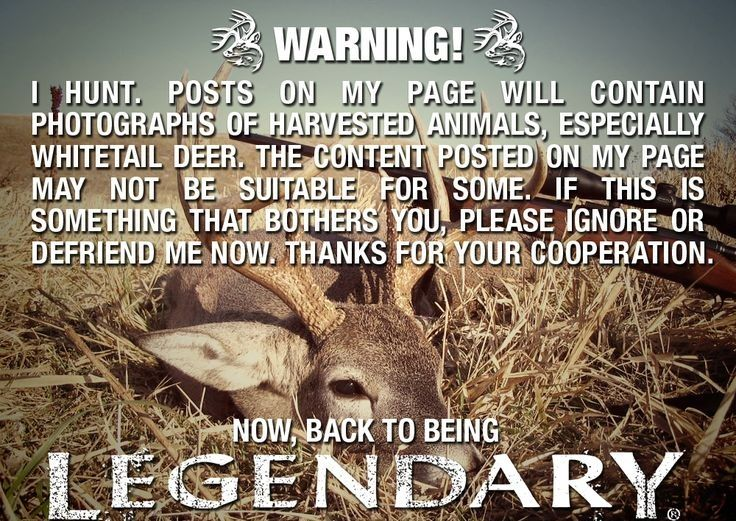 Deer Hunting Quotes For Women Funny Stuff Hunting Quotes Fascinating Funny Hunting Quotes