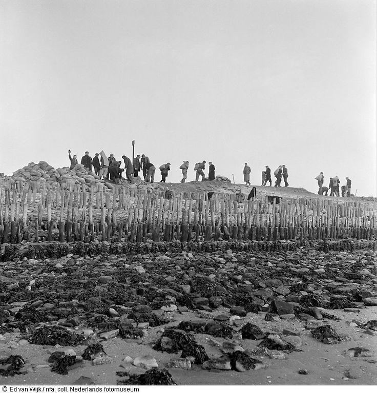 Dijkverzwaring vlak na de watersnoodramp, Zeeland (1953)