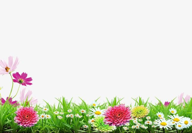 Spring Background In 2020 Background Hd Wallpaper