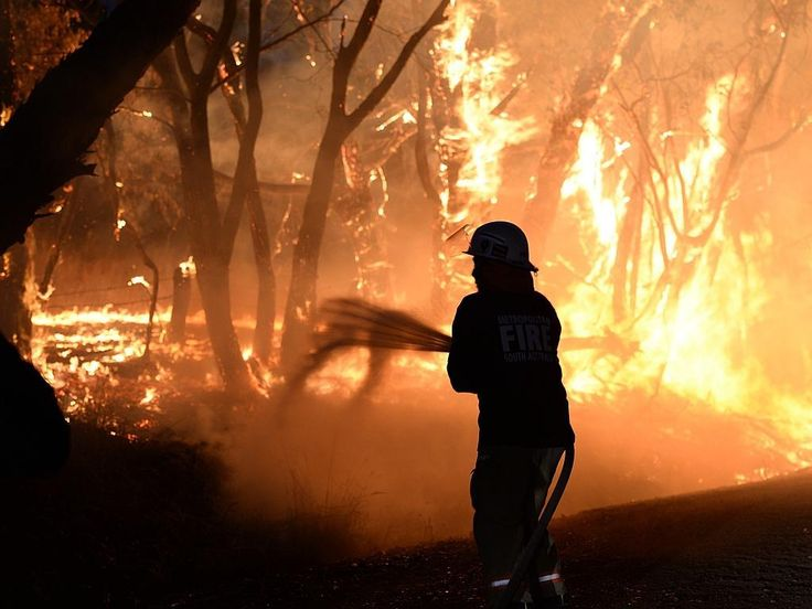 Our pictures: Adelaide Hills bushfire | The Advertiser An MFS fire crew fights the flames at Wattle Rd, Kersbrook. Picture: Campbell Brodie.