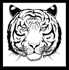 tiger face tattoos - Google Search