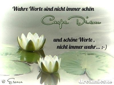 dreamies.de (m02mte0bob8.jpg)   – Zitate