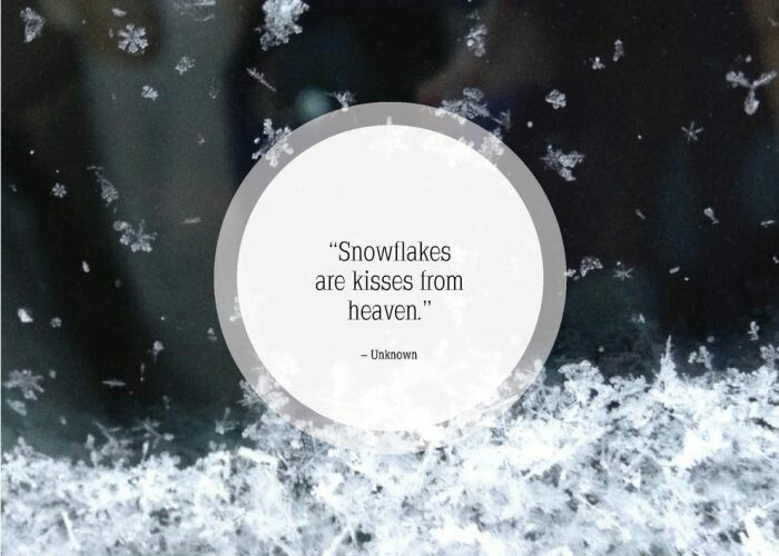 Discover And Share Snow Winter Quotes. Explore Our Collection Of  Motivational And Famous Quotes By Authors You Know And Love.