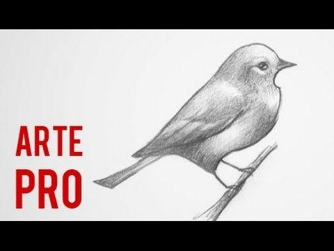 Como Dibujar Un Pajaro Paso A Paso Como Dibujar Aves Dibujos De Pajaro Dibujos De Aves