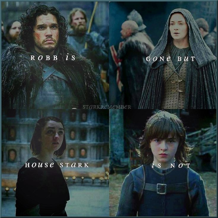 The remaining seeds of House Stark