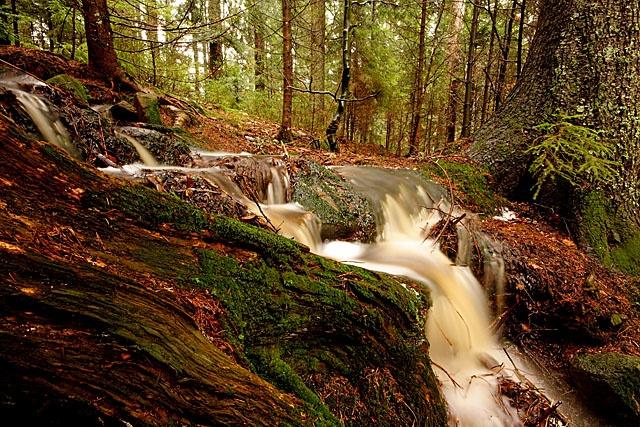 Black Forest - Glaswaldsee