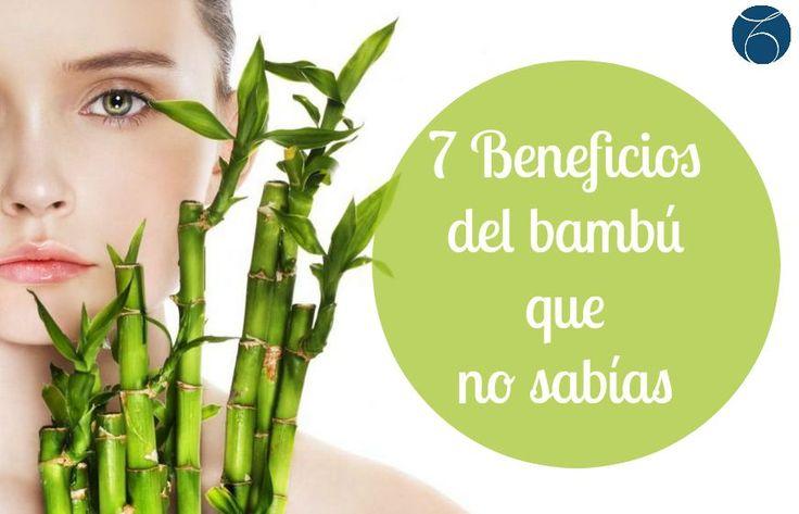 ¿Todavía no conoces los beneficios del bambú? Hoy te contamos todo lo que esta planta milagrosa aporta a tu piel, para conseguir una tez más luminosa, elástica y mucho más joven. http://bit.ly/1MWmcFE #belleza   #mujer   #indiba   #habits   #salud   #bienestar